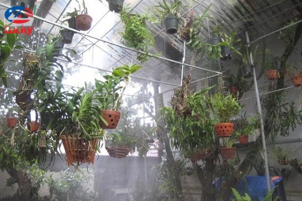 hệ thống phun sương tạo ẩm