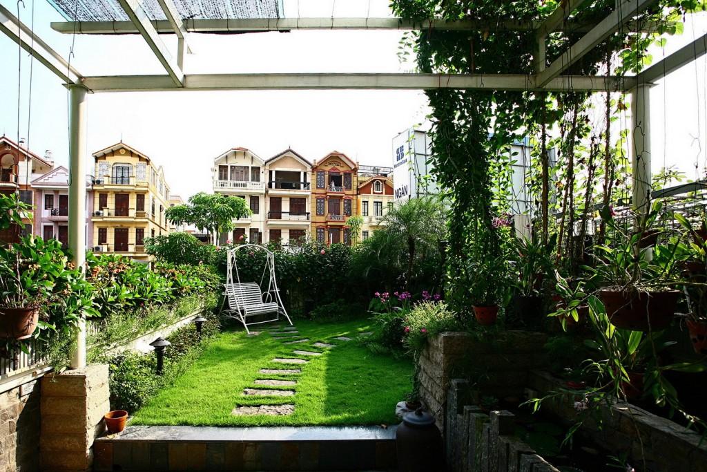 Chống nóng cho mái nhà - vườn treo trên sân thượng