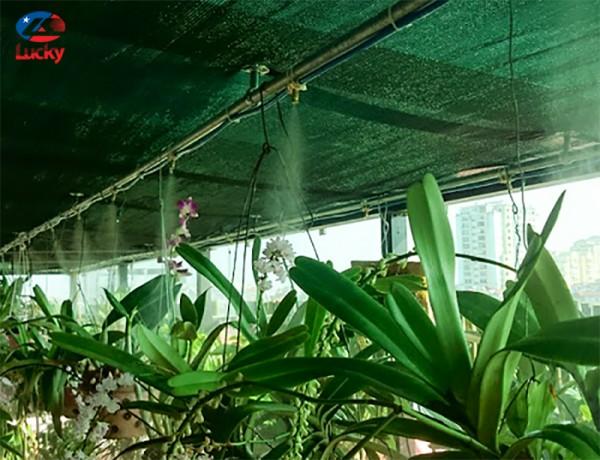 Hệ thống phun sương tưới cây tại Hà Nội