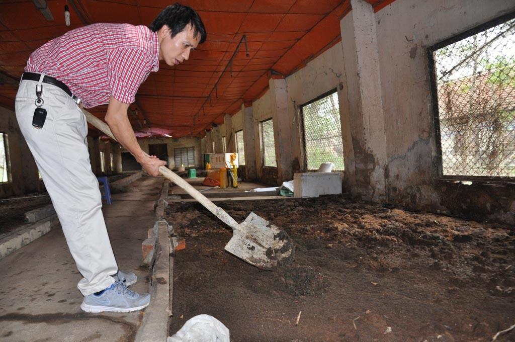 cách nuôi trùn quế tại nhà